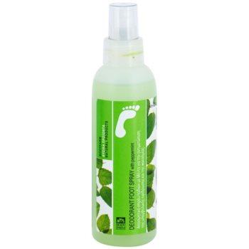 Bodyfarm Feet Care Peppermint Fußspary im Spray