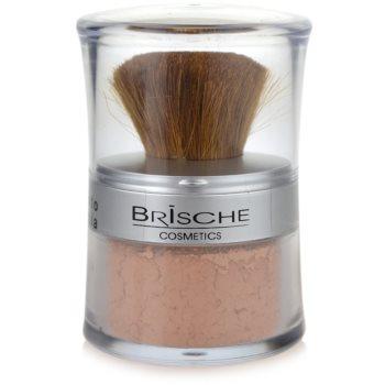 Brische Mineral мінеральна пудра