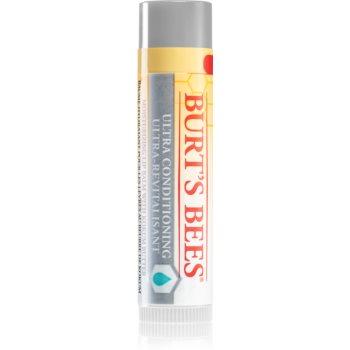 Burt's Bees Lip Care balsam pentru buze uscate poza noua
