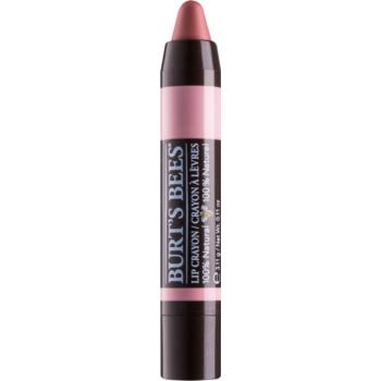 Burt's Bees Lip Crayon ruj in creion cu efect matifiant