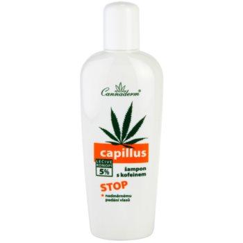 Cannaderm Capillus kofeinski šampon proti izpadanju las