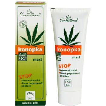 Cannaderm Konopka pomada  para pele muito seca 2