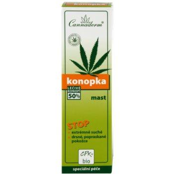 Cannaderm Konopka pomada  para pele muito seca 3