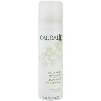 Caudalie Cleaners&Toners spray pe baza de apa pentru reimprospatare pentru toate tipurile de ten, inclusiv piele sensibila  75 ml