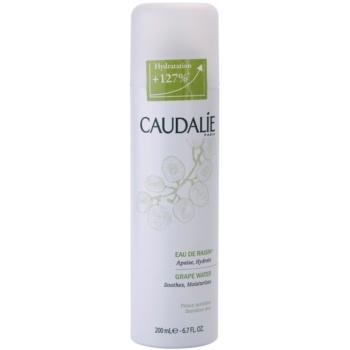 Caudalie Cleaners&Toners spray pe baza de apa pentru reimprospatare pentru toate tipurile de ten, inclusiv piele sensibila  200 ml