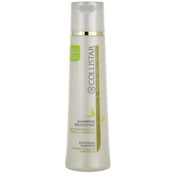 Collistar Special Perfect Hair šampon pro poškozené, chemicky ošetřené vlasy 250 ml