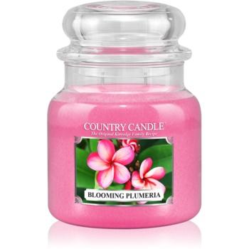 Country Candle Blooming Plumeria lumanari parfumate 453 g