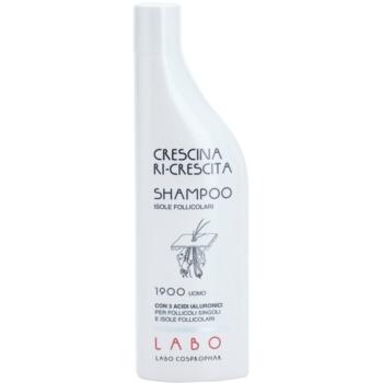 Crescina Re-Growth Follicular Islands 1900 šampon proti srednje naprednemu redčenju las za moške
