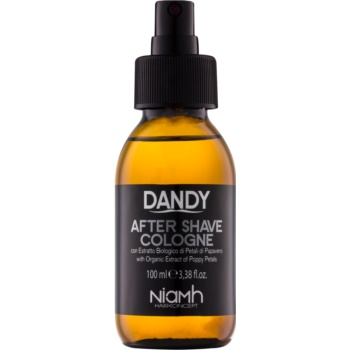 Fotografie DANDY After Shave voda po holení 100 ml