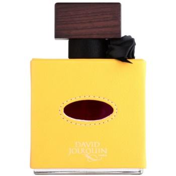 David Jourquin Cuir Solaire Eau de Parfum unissexo 2