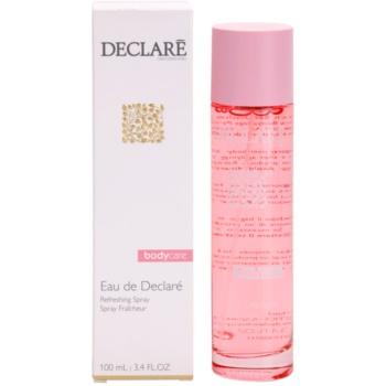 Declaré Body Care erfrischendes Bodyspray 2