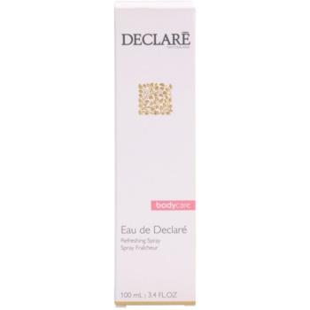 Declaré Body Care erfrischendes Bodyspray 3
