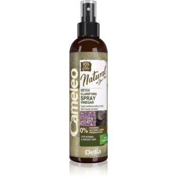 Delia Cosmetics Cameleo Natural conditioner Spray Leave-in imagine produs