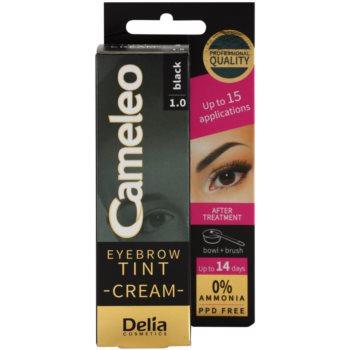 Delia Cosmetics Cameleo професионална крем-боя за вежди без амоняк