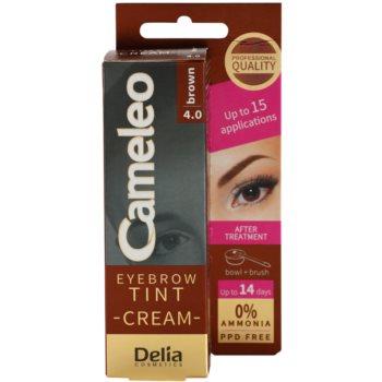 Delia Cosmetics Cameleo Vopsea crema profesionala pentru sprancene fãrã amoniac imagine produs