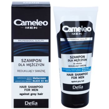 Delia Cosmetics Cameleo Men Shampoo to Prevent Dark Hair from Going Grey 1