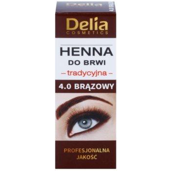 Delia Cosmetics Henna culoare pentru sprancene imagine produs