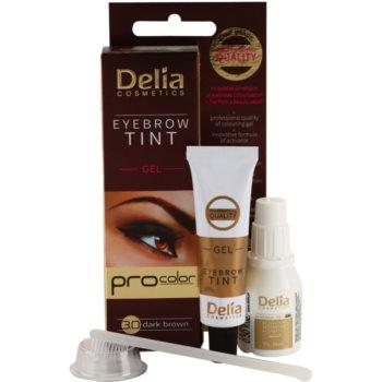 Delia Cosmetics Pro Color profesionalna gelasta barva za obrvi brez amoniaka 1