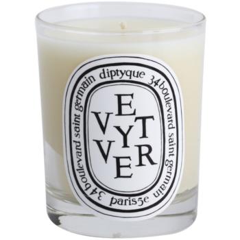 Diptyque Vetyver ароматизована свічка 1
