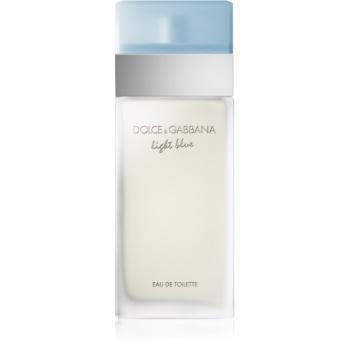 Fotografie Dolce & Gabbana Light Blue toaletní voda pro ženy 25 ml