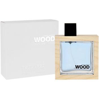 Dsquared2 He Wood Ocean Wet Wood toaletní voda pro muže