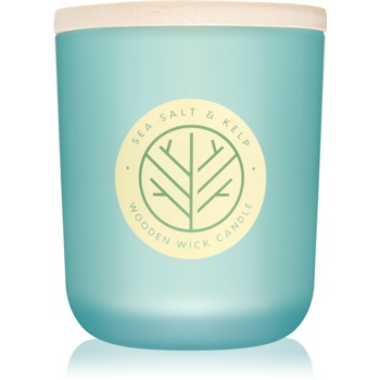 DW Home Sea Salt & Kelp lumanari parfumate  320,49 g
