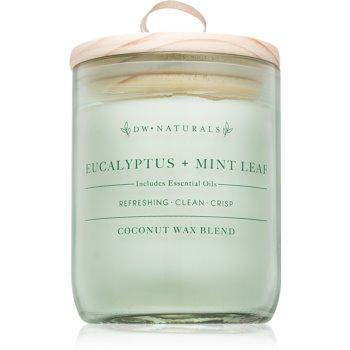 DW Home Eucalyptus + Mint Leaf lumanari parfumate 500,94 g