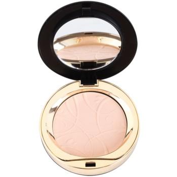 Eveline Cosmetics Celebrities Beauty kompaktní minerální pudr odstín 22 Natural 9 g
