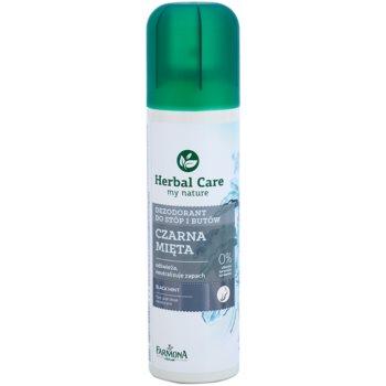 Farmona Herbal Care Black Mint deodorant spray pentru picioare si pantofi