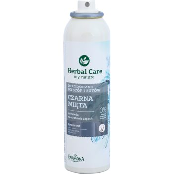 Farmona Herbal Care Black Mint Deodorant Spray für Füße und Schuhe 1