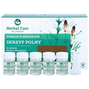 Farmona Herbal Care Horsetail tratament intensiv pentru par foarte deteriorat