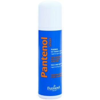 Farmona Panthenol Spuma regeneratoare pentru fata si corp