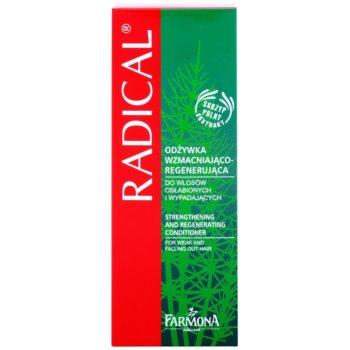 Farmona Radical Hair Loss cuidado sem enxáguar com efeito regenerador 2