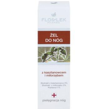 FlosLek Pharma Leg Care Horse Chestnut & Ginkgo Biloba gel refrigerante  para pés cansados 2