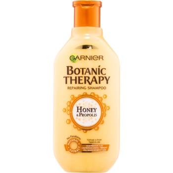 Garnier Botanic Therapy Honey sampon regenerator pentru par deteriorat