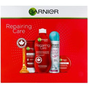Garnier Repairing Care zestaw kosmetyków I.