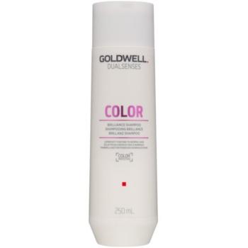 Goldwell Dualsenses Color șampon pentru protecția părului vopsit