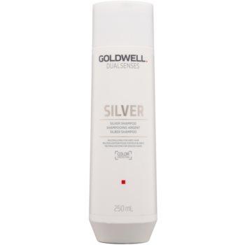 Fotografie Goldwell Dualsenses Silver neutralizující stříbrný šampon pro blond a šedivé vlasy 250 ml