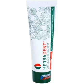 Herbadent Herbal Care pasta de dinti cu extract din plante cu flor