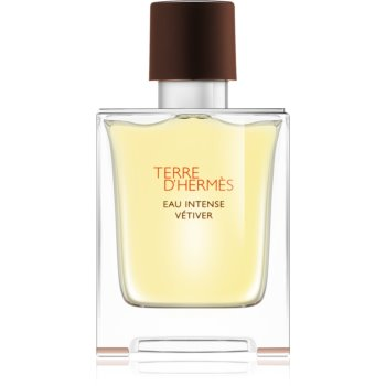 Hermès Terre d'Hermès Eau Intense Vétiver parfémovaná voda pro muže 50 ml