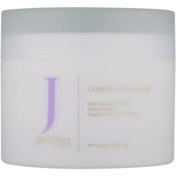 Fotografie Jericho Body Care pleťový gel s aloe vera 200 g
