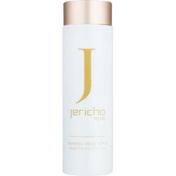 Jericho Face Care spuma de curatat
