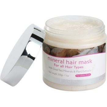 Jericho Hair Care máscara mineral de cabelo para todos os tipos de cabelos 1