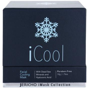 Jericho iMask Collection iCool kühlende Maske für die Haut mit Mineralien aus dem Toten Meer 3