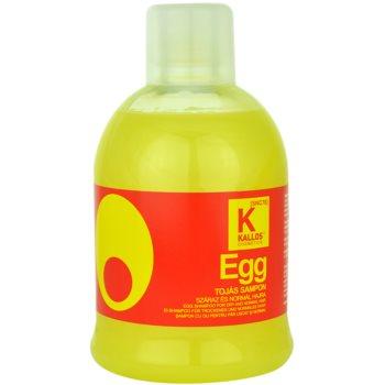 Kallos Hair Care hranilni šampon za suhe in normalne lase