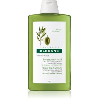 Klorane Olive Extract șampon cu extract de ulei de măsline