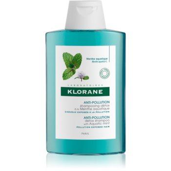 Klorane Aquatic Mint ?ampon detoxifiant pentru curã?are pentru pãr expus la poluare poza