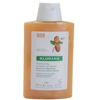 Fotografie Klorane Dattier šampon pro lámavé a namáhané vlasy 200 ml