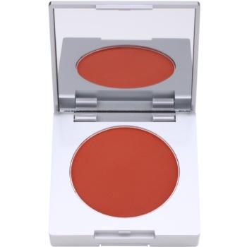Fotografie Kryolan Basic Face & Body kompaktní tvářenka se štětcem a zrcátkem odstín Shading Brown 8,5 g