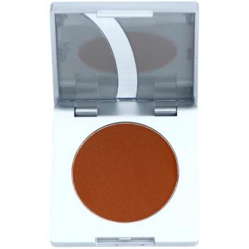 Fotografie Kryolan Basic Eyes tónovací pudr na obočí odstín Auburn 3,5 g